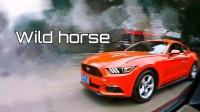 GoPro拍摄-Wild horse GT