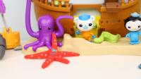 海底小纵队 彩泥海星制作 海底世界 定格动画 趣盒子玩具