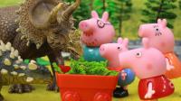 『奇趣箱』小猪佩奇玩具视频:巫婆施展魔法变出三角龙和甲龙等恐龙,小猪佩奇用草引开