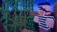 大海解说 我的世界Minecraft 海盗船长金银岛宝藏
