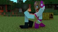 我的世界动画片 苦力怕与小鸡的故事