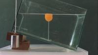 【初中物理屋】如何确定浮力的方向