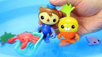 海底小纵队 谢灵通和小萝卜用兜网抓螃蟹 水上玩具
