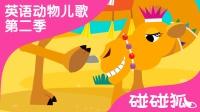 Camel  | 英语动物儿歌 第二季 8 |  碰碰狐!动物儿歌