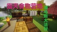 【茶道】露台食物营地,潘马斯大法好【墨鱼】1.10.2mod生存ep.5