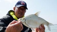 《游钓中国》第二季第50集 手竿挂底难有建树  串钩上阵撬开鱼口