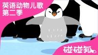 Penguin | 英语动物儿歌 第二季 11 | 碰碰狐!动物儿歌