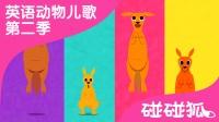 Kangaroo | 英语动物儿歌 第二季 13 | 碰碰狐! 动物儿歌