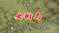 黄梅戏《女驸马》韩再芬 李萍 1080P