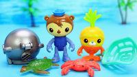 海底小纵队水上玩具 谢灵通和小萝卜潜水抓海鲜