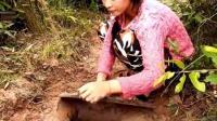 妹子用石板做捕蛇陷阱, 蛇傻傻的往陷阱里钻