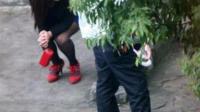 站街女与农民工树林内20元交易, 记者全程冒死跟拍犯罪经过