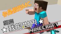 ★我的世界★Minecraft《玩了假MC【下】》