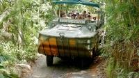 老司机带你探访《阿凡达》灵感之源:库兰达雨林 41