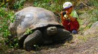 达尔文进化论的起源地, 岛上的动物都快成精了!