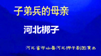 河北梆子——《子弟兵的母亲》许荷英 扈晓波 刘丽彩 河北梆子 第1张