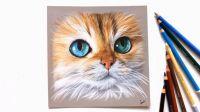 小猫咪手绘