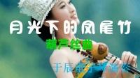 于辰电子琴演奏  月光下的凤尾竹 葫芦丝曲(17070601)
