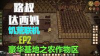 【路叔达西妈】饥荒联机02豪华基地之农作物区