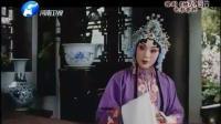 豫剧电影——《桃花庵》苗文华 豫剧 第1张