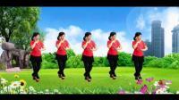 广场舞《歌在飞》_广场舞视频大全
