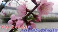 秦博 - 爱你一辈子【2017最新流行伤感MV】