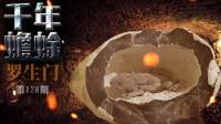 石头里的千年蟾蜍之谜