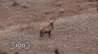 狙击步枪远距离狩猎,弹道抛物线清晰可见(枪械狩猎)