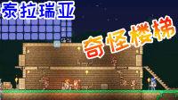 """[宝妈趣玩]""""泰拉瑞亚""""生存02★奇怪楼梯+恶魔眼(Terraria多人联机)"""