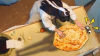 奇葩法医居然用烙饼来验尸? ! #大鱼FUN制造#