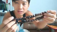 最新研发的森林手工体验: 利用野生松塔制作, 各种松子项链首饰!