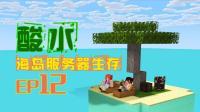 我的世界《酸水海岛服务器多人生存EP12 单片全自动甘蔗机》Minecraft 安逸菌解说