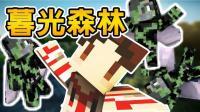 【纸片模型】夏日特产: 苍蝇大军【暮光森林|深海船队】Minecraft模组系列 悟欣, 夏克斯, 米妃