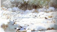 色粉风景—宫崎骏, 百变狸猫