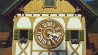 [发现]德国号称千座钟的屋子长啥样 32