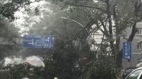 台风来时你看见窗外在塔吊会怎么想? 是不是这样?