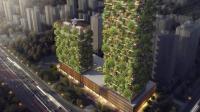 """中国广西建全球第一座""""森林城市"""", 每年产生900吨氧气!"""