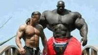 世上最猛的肌肉男 看到这身肌肉有什么想法 回头率百分百