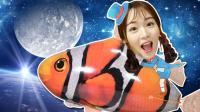 飞上天空的尼莫! 一起来玩超大气球小丑鱼吧!