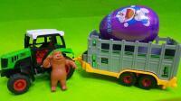 熊出没熊大购买巨大哆啦A梦奇趣蛋惊喜蛋
