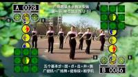 A13_桃花运_踏步练习_微视广场舞基本步教学专辑