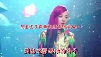 2017中文DJ舞曲串烧(258)