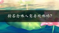 仁禅法师:持名念佛人需要观佛吗?