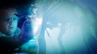 【看电影】外星生物入侵地球, 几分钟看完让人绝望的恐怖片《迷雾》