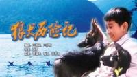 狼犬历险记原盘01