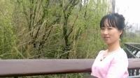 一首伤感歌《 又见山里红dj 》 2017 网络流行歌曲 春天依恋的季节
