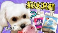 小狗可以吃的冰淇淋? ! coco会喜欢哪一款呢?