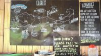 【绿行 迷你Vlog】这块小黑板告诉印尼旅行攻略 010