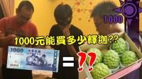舞秋风一千元系列 1000元能买多少释迦?