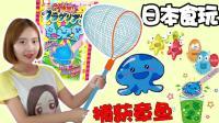 日本食玩DIY之捕获章鱼的制作 新魔力玩具学校